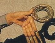 Самые длинные в мире ногти