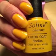 Желтый Soline